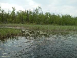 Benway Lake